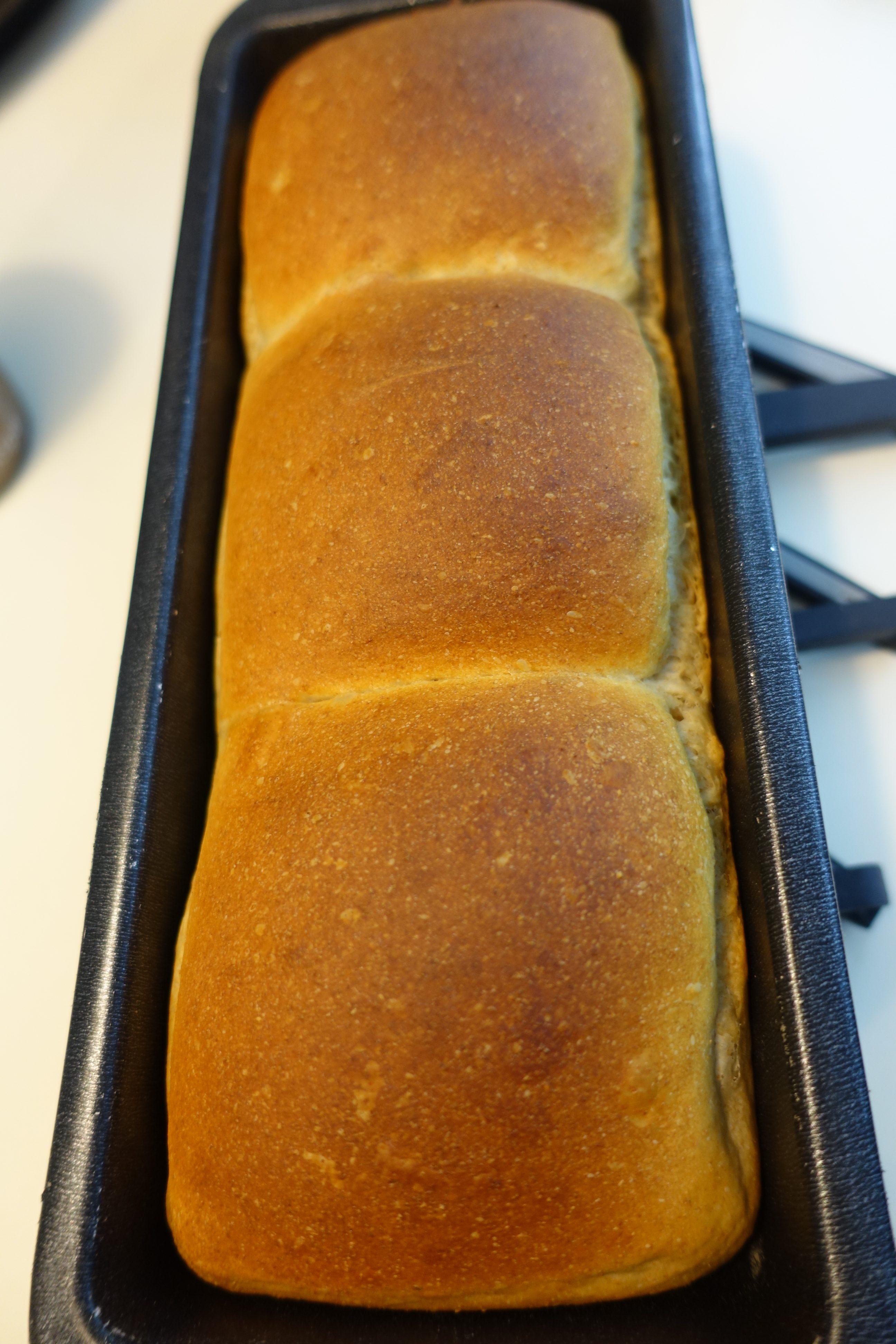 soft sourdough wholemeal bread